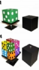 Split Dice (Stage Size) by Tora Magic